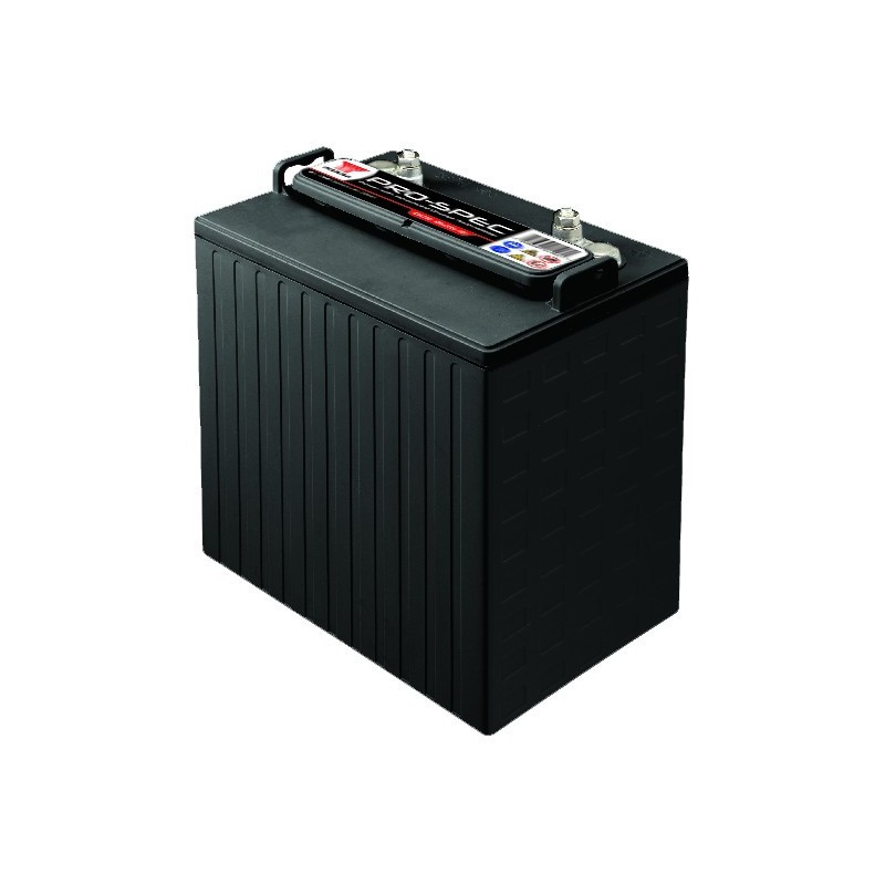 Batterie YUASA DCB8125 8V 240AH