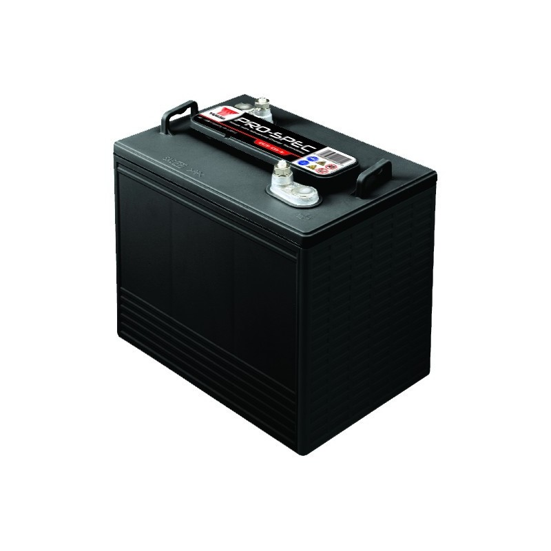 Batterie YUASA DCB125-6 6V 240AH