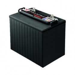 Batterie YUASA Deep-Cycle DCB875-8 8V 170AH