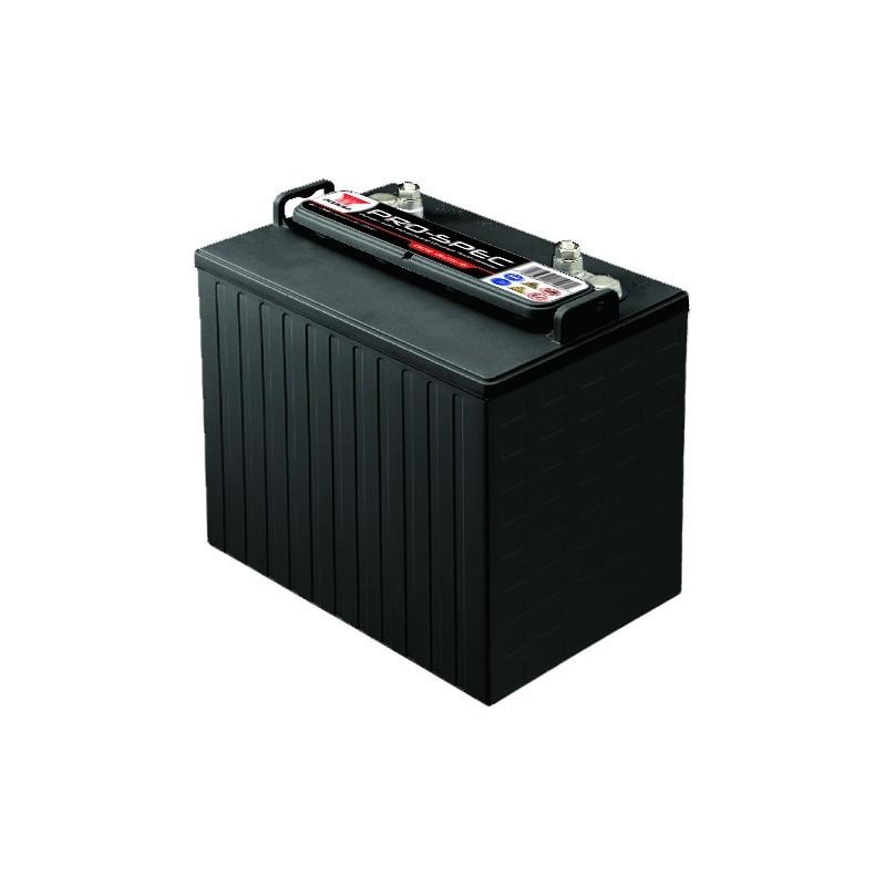 Batterie YUASA DCB875-8 8V 170AH