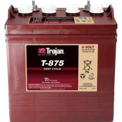 Batterie traction TROJAN Deep-Cycle T-875 8V 170AH