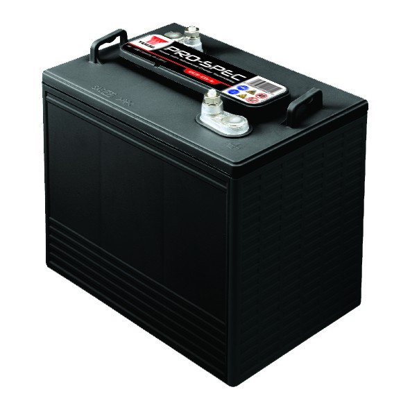 Batterie YUASA DCB125-6 6V...